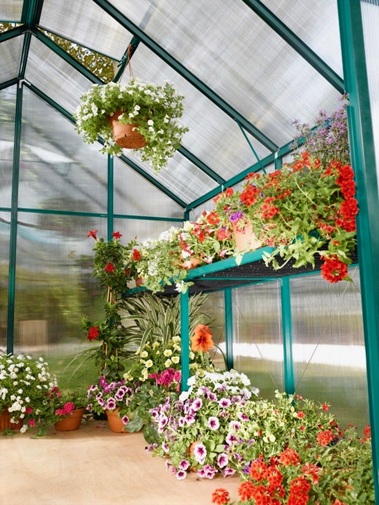 Greenhouse and Polycarbonate Sheets